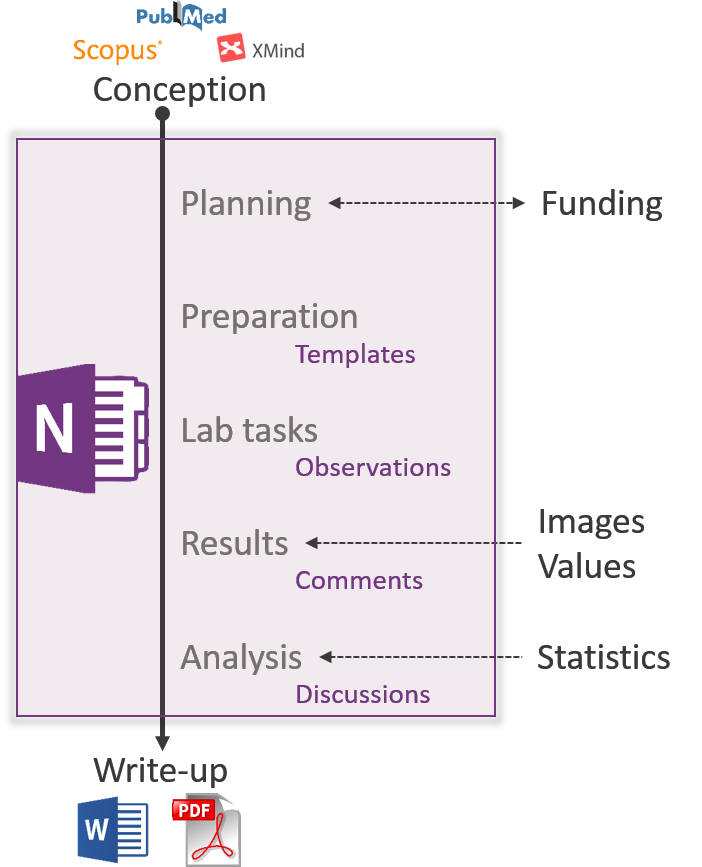 Blog How To Use Onenote As Your Electronic Lab Book Dr